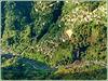 Madeira : Miradouro Curral das Freiras - (2019/03 SPC 10° 3v:) HIGHLY VERTIGOUS IMAGE