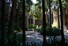 531 - BARCELONA - Catedral de la Santa Creu