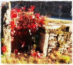 HFF d'automne