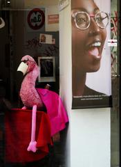 funny flamingo