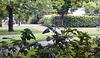 park-1137-1139 Panorama-01-07-17