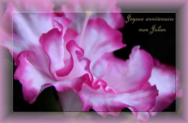 Ipernity Joyeux Anniversaire A Mon Ami Julien Avec Mes Bisous By
