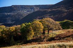 Autumn on The Longdendale Trail