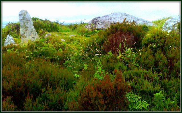 Carn Brae granite