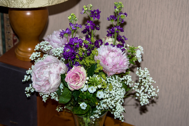 Congratulations flowers !