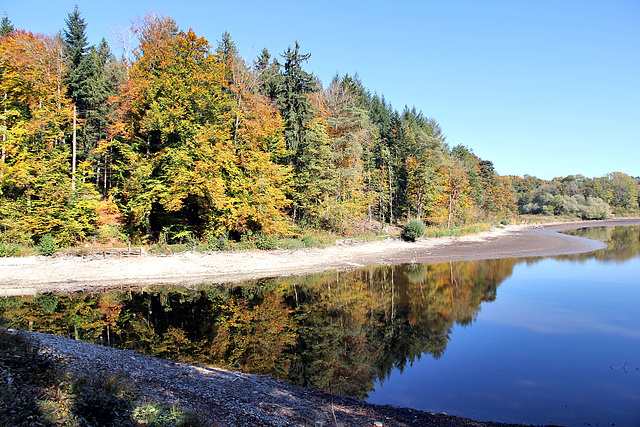 Herbst am Rössler Weiher