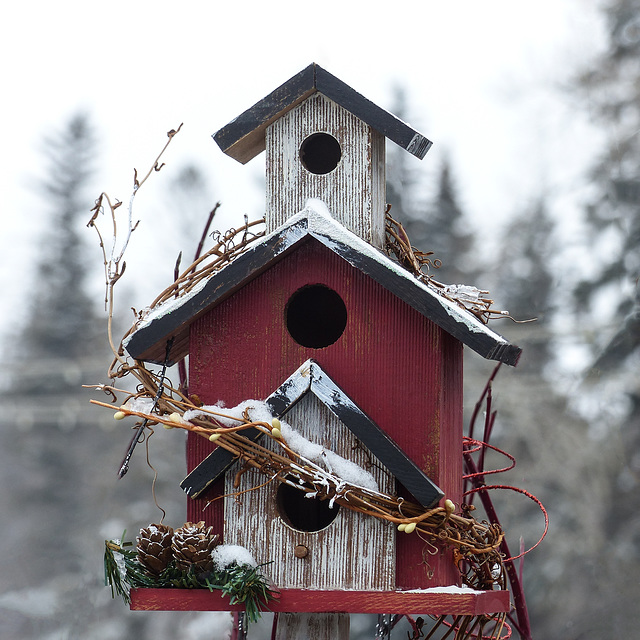 Cosy little birdhouse