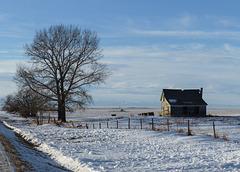 The prairies in winter