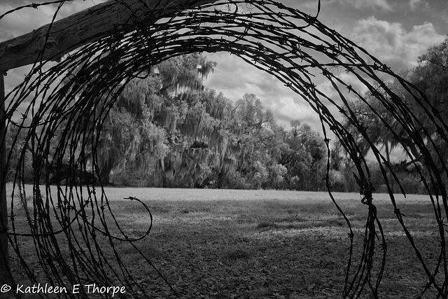 Circle B Bar Preserve 030216-Barbed Wire Rainbow