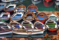 Barche napoletane (348)