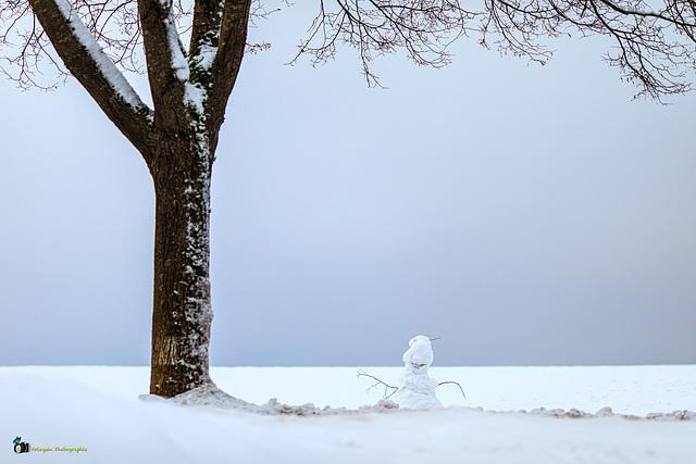 Bonhomme de neige (pour Annick)