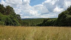 Blankenheim 20160806_144753
