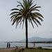 20161020 2345VRAw [E] Atalaya Park Hotel, Estepona, Spanien