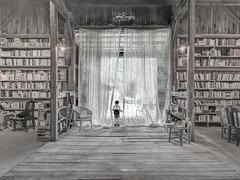 Des livres et moi de l'ignorance...  Livres et moi la connaissance IMG152938