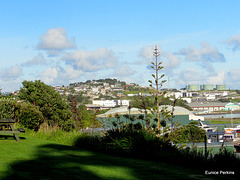 New Plymouth Holiday Camp View.
