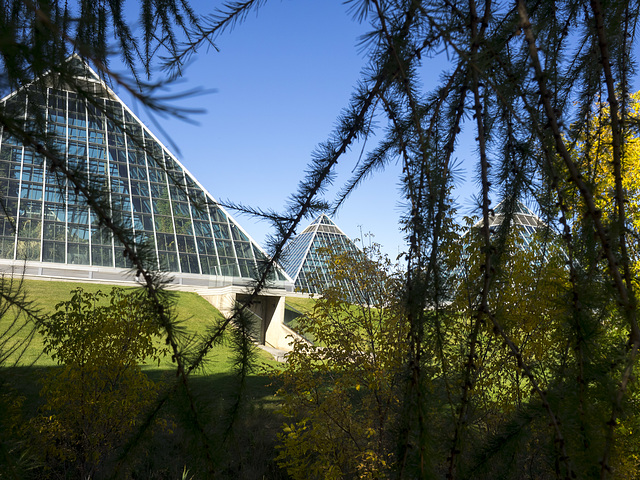 The Muttart Conservatory Pyramids