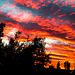 Bettws Sunset