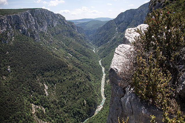 20150529 8287VRAw [R~F] Gorges du Verdon, Cote d'Azur