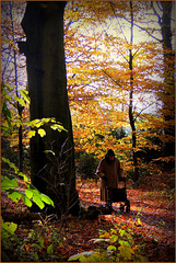 #19 The Elderly lady and her Autumn walk...
