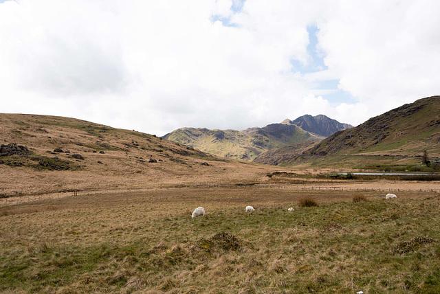 Landscape of Snowdonia.