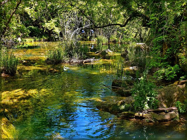 Kurşunlu lake - Turchia (367)