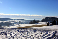 oberschwäbische Winterlandschaft  21.01.2016