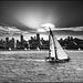 San Francisco sailing - 1986