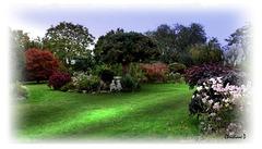 Bel automne au jardin ...  Lovely Autumn in the garden ...