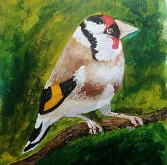 Goldfinch in acrylic