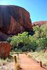Der Weg zum Uluru