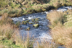 Yellowslacks Brook