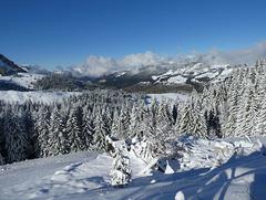 Premières neiges en montagne