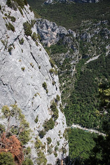 20150529 8289VRAw [R~F] Gorges du Verdon, Cote d'Azur