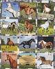 artistamps: horses