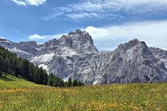 Rotwandwiesen mit Blick auf die Dreischusterspitze 3152 m