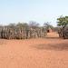 Namibia, Traditional Himba Village of Onjowewe