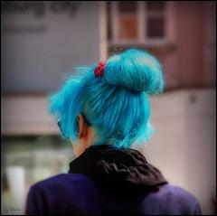 Frühling läßt sein Blaues Band... ( Spring lets its blue ribbon...)