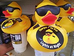 Duck chlorinator