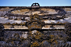 The top of the window I, Chapter House.