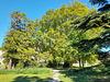 Les arbres de mon parc***********