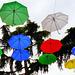 Genova : Anche noi abbiamo ombrelli colorati ! (920)
