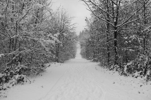 l'hiver est son blanc manteau
