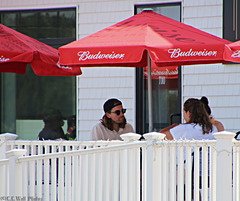 Two Budweisers, Please -- HFF !!