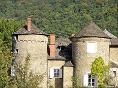 Villemoirieu (38) 9 octobre 2010. Château de Malin.