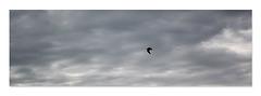 Horizontal sky  Newhaven 20 10 2020