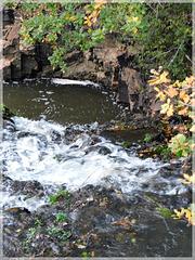 Cascade près de l'étang du Néal (22)