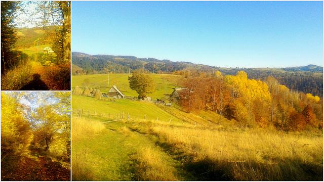 Autumn in my village 2