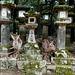 Nara Kōen 奈良公園