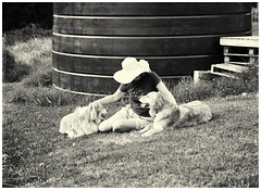 Woman & Dogs