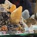 Calcite + sphaelerite- Tenessee